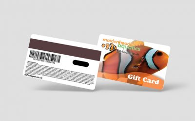 Switching to Prepaid Plastic Gift Cards Doubled Revenue Stream and Increased Security